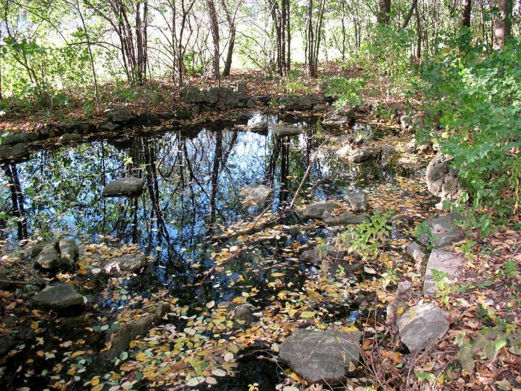 Pond at the original Lilac Park on Highway 100 and Minnetonka Boulevard